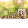 Investitionsprogramm Landwirtschaft – ...
