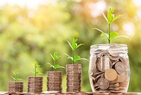 Antragsverfahren Investitionsprogramm Landwirtschaft